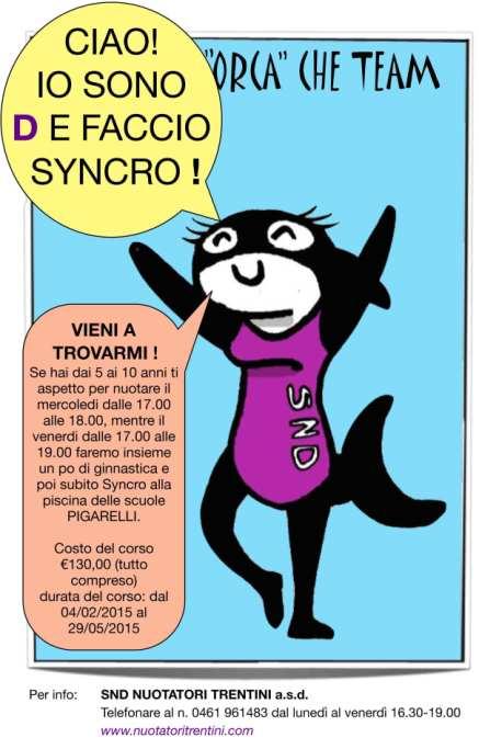 Volantino-syncro2015